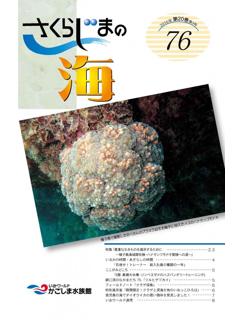 newsletter76_ページ_1