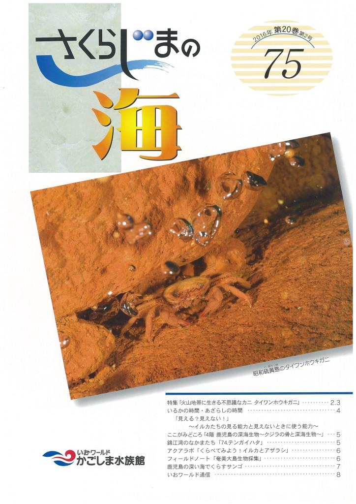 newsletter75_ページ_1