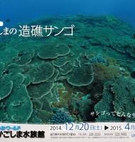 水族館B3電車用ポスター最終