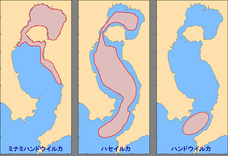 錦江湾3種分布