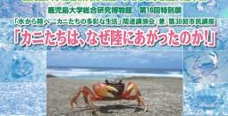水族館特別展チラシ0926yoko