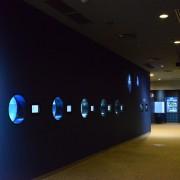 クラゲ回廊